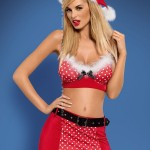 obsessive-mrs-claus-set